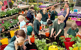 Children take part in 'Grow Your Own Chips' competition